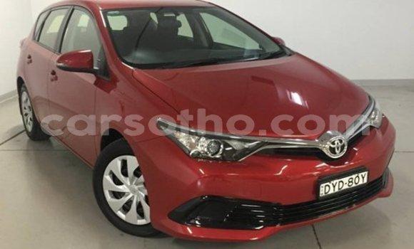 Buy Used Toyota Corolla Red Car in Maseru in Maseru