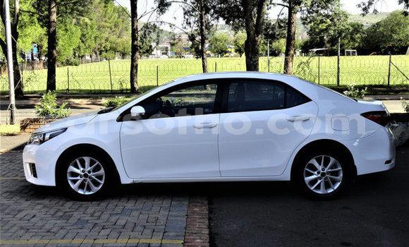 Buy Used Toyota Corolla White Car in Hlotse in Leribe