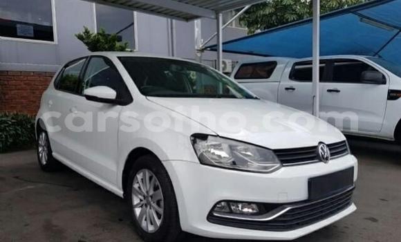 Buy Used Volkswagen Polo GTI White Car in Maseru in Maseru