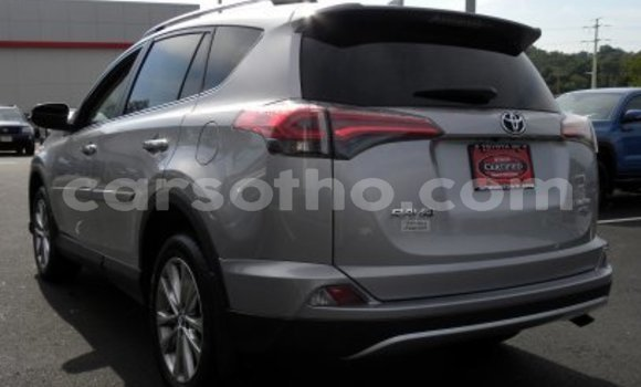Buy New Toyota RAV4 Red Car in Quthing in Butha-Buthe