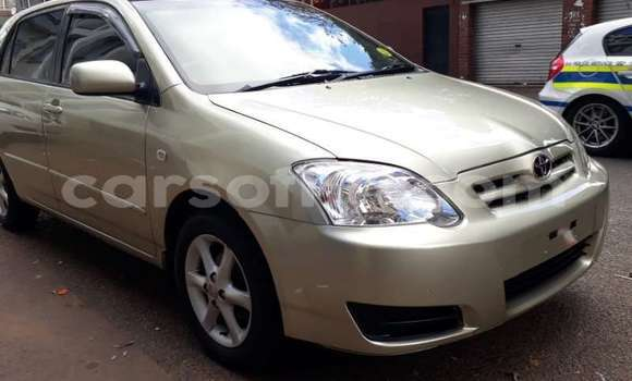 Buy Used Toyota Runx Other Car in Maputsoe in Leribe