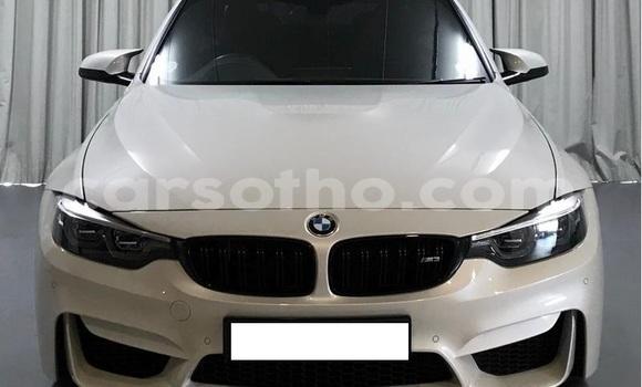 Buy Used BMW M6 White Car in Roma in Maseru