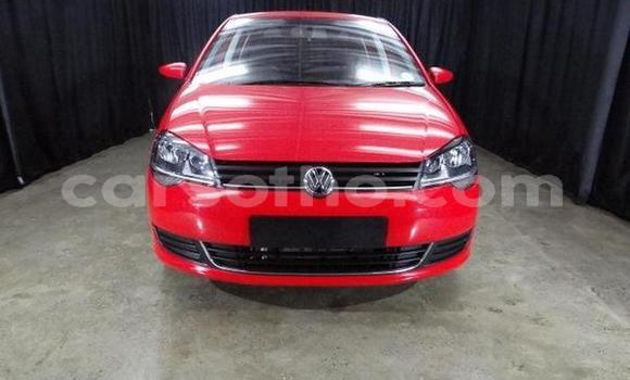 Buy Used Volkswagen Polo Red Car in Butha–Buthe in Thaba-Tseka