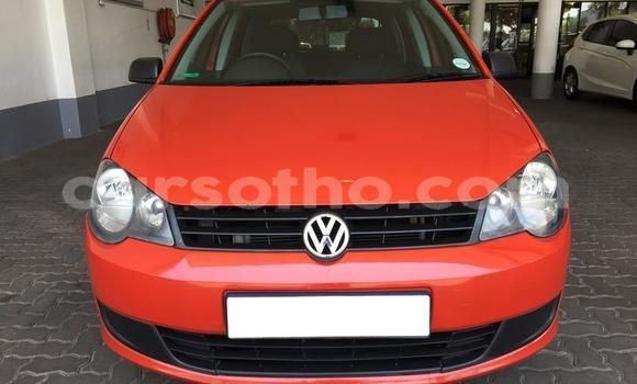 Buy Used Volkswagen Polo Other Car in Roma in Maseru
