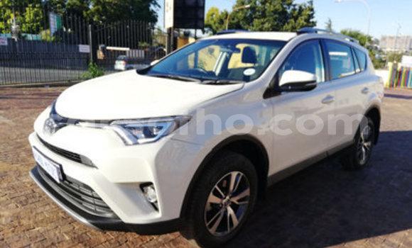 Buy Used Toyota RAV 4 White Car in Maputsoa in Leribe