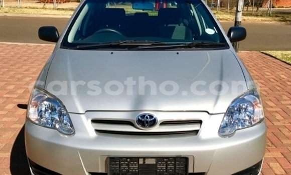 Buy Used Toyota Runx Silver Car in Roma in Maseru