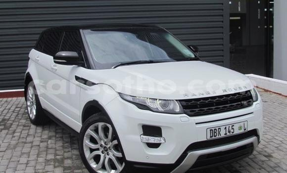 Buy Used Land Rover Range Rover Evoque White Car in Butha Buthe in Butha-Buthe