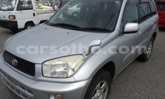 Buy Used Toyota RAV4 Silver Car in Maseru in Maseru