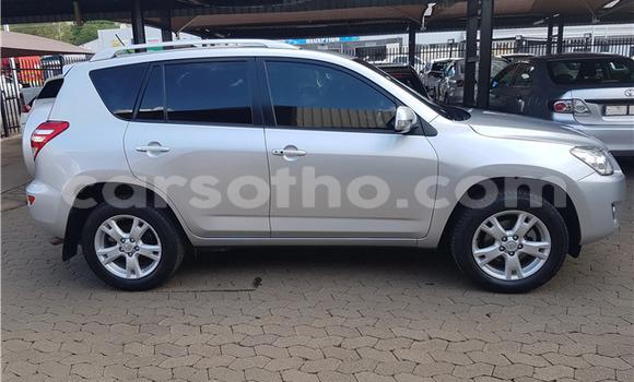 Buy Used Toyota RAV 4 Silver Car in Peka in Leribe