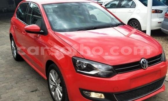 Buy Used Volkswagen Polo Red Car in Maputsoe in Leribe