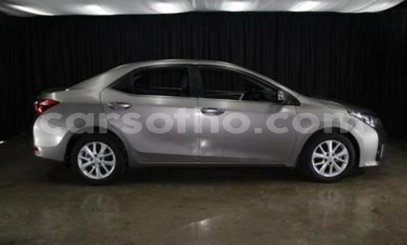 Buy Used Toyota Corolla Other Car in Butha–Buthe in Thaba-Tseka