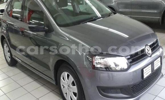 Buy Used Volkswagen Polo Silver Car in Thaba–Tseka in Mafeteng