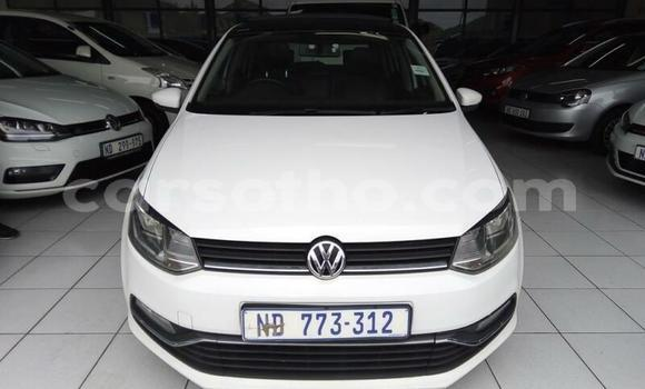 Buy Used Volkswagen Polo White Car in Thaba–Tseka in Mafeteng