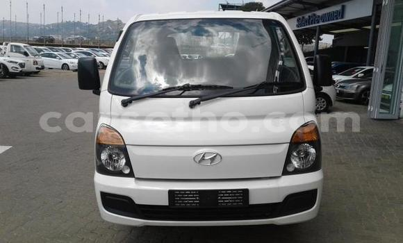 Buy Used Hyundai H200 White Truck in Maseru in Maseru
