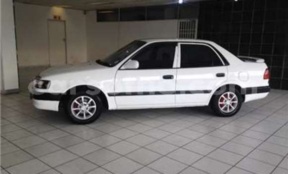 Buy Used Toyota Corolla White Car in Butha–Buthe in Thaba-Tseka