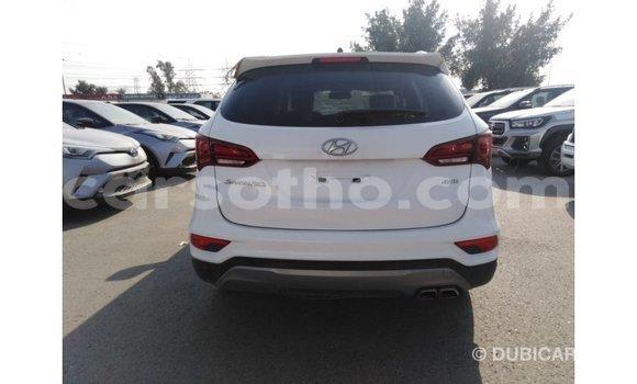 Buy Import Hyundai Santa Fe White Car in Import - Dubai in Maseru