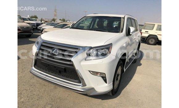 Buy Import Lexus GX White Car in Import - Dubai in Maseru