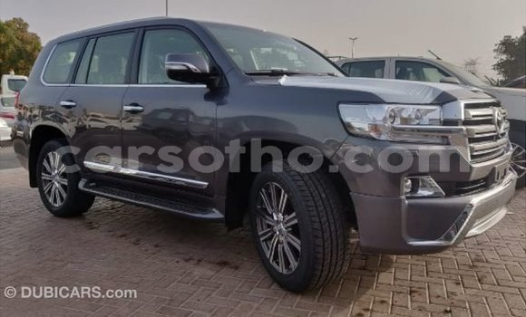 Buy Import Toyota Land Cruiser Other Car in Import - Dubai in Maseru