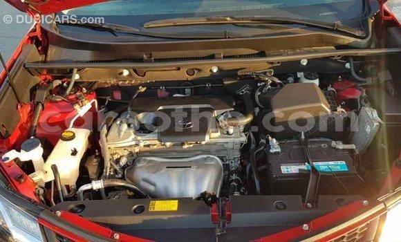 Buy Import Toyota RAV4 Red Car in Import - Dubai in Maseru