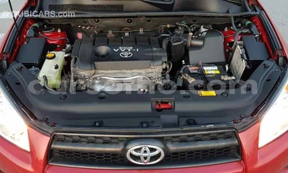 Buy Import Toyota RAV 4 Red Car in Import - Dubai in Maseru
