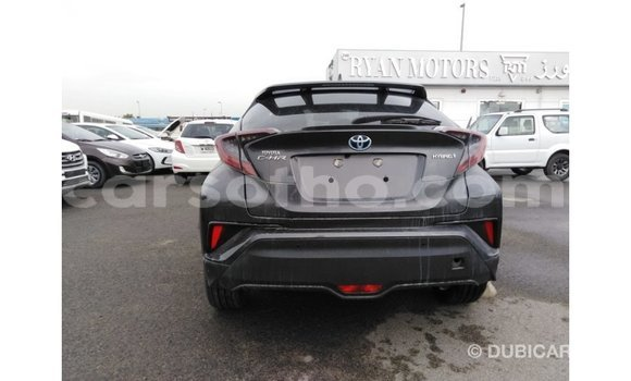 Buy Import Toyota C-HR Other Car in Import - Dubai in Maseru