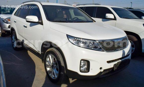 Buy Import Kia Sorento White Car in Import - Dubai in Maseru