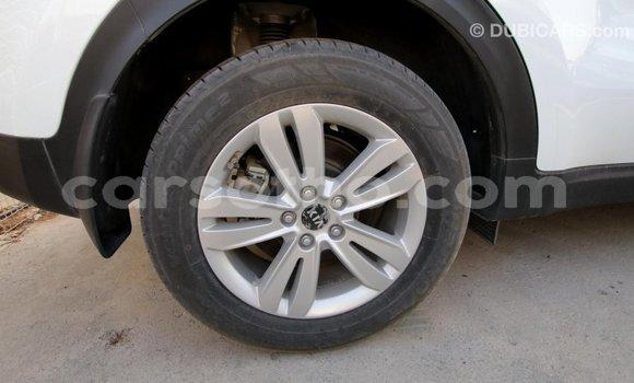 Buy Import Kia Sportage White Car in Import - Dubai in Maseru