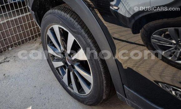 Buy Import Nissan Evalia Black Truck in Import - Dubai in Maseru