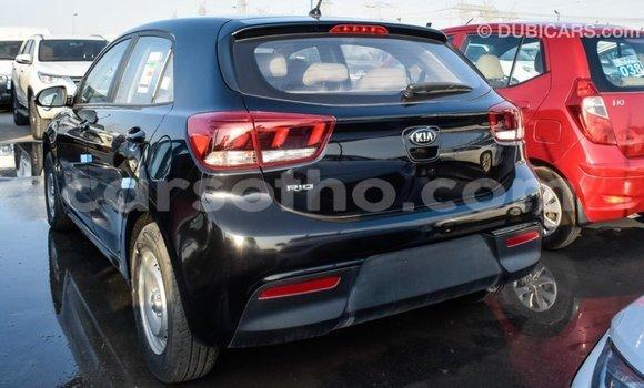 Buy Import Kia Rio Black Car in Import - Dubai in Maseru