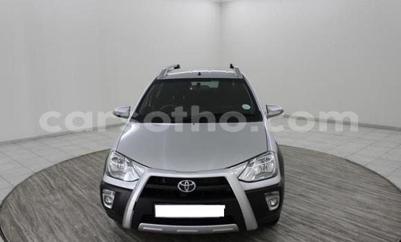 Buy Used Toyota Etios Silver Car in Roma in Maseru