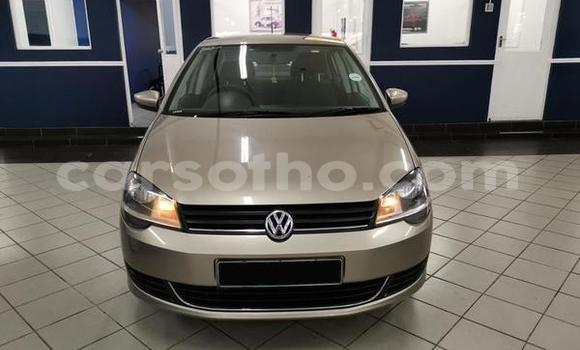 Buy Used Volkswagen Polo White Car in Butha–Buthe in Thaba-Tseka