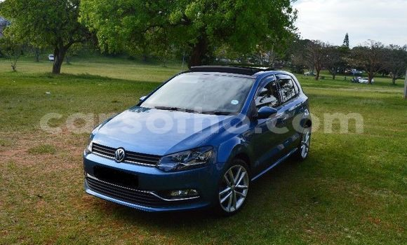 Buy Used Volkswagen Polo Blue Car in Butha–Buthe in Thaba-Tseka