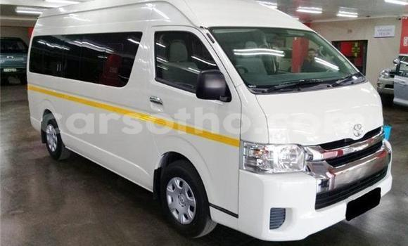 Buy Used Toyota Raum White Car in Butha–Buthe in Thaba-Tseka
