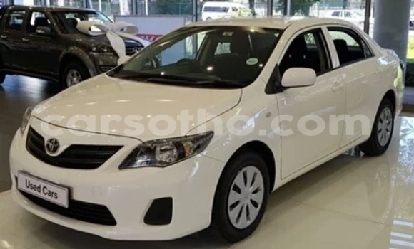 Buy Used Toyota Avensis White Car in Mafeteng in Mafeteng