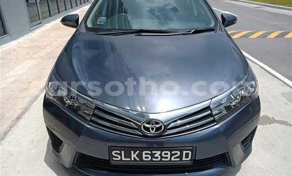 Buy Used Toyota Corolla Other Car in Mokhotlong in Berea