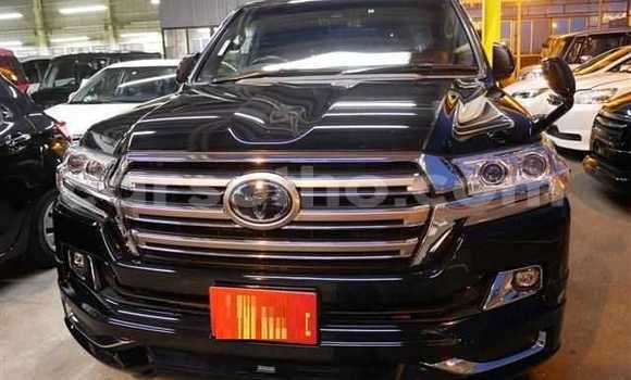 Buy Used Toyota Land Cruiser Prado Black Car in Mafeteng in Mafeteng