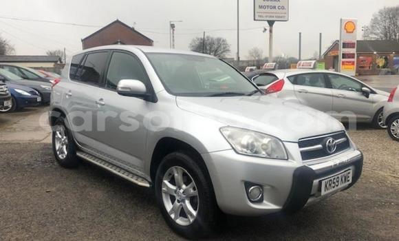 Buy Used Toyota RAV4 Silver Car in Quthing in Butha-Buthe