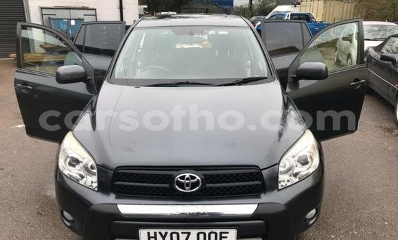 Buy Used Toyota RAV 4 Other Car in Teyateyaneng in Berea