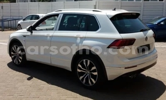 Buy Used Volkswagen Tiguan White Car in Maseru in Maseru