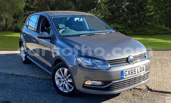 Buy Used Volkswagen Polo Silver Car in Maputsoa in Leribe