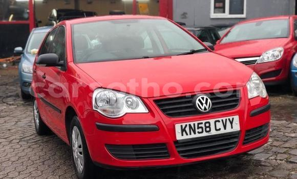 Buy Used Volkswagen Polo Red Car in Hlotse in Leribe