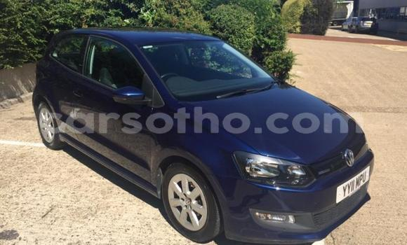 Buy Used Volkswagen Polo Blue Car in Thaba–Tseka in Mafeteng