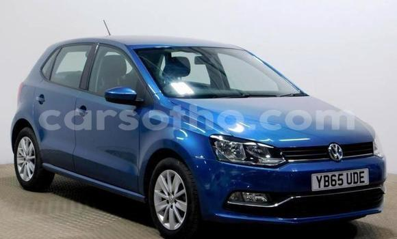 Buy Used Volkswagen Polo Blue Car in Quthing in Butha-Buthe