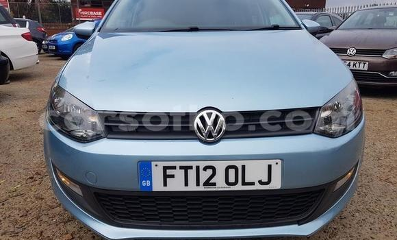 Buy Used Volkswagen Polo Blue Car in Maputsoe in Leribe
