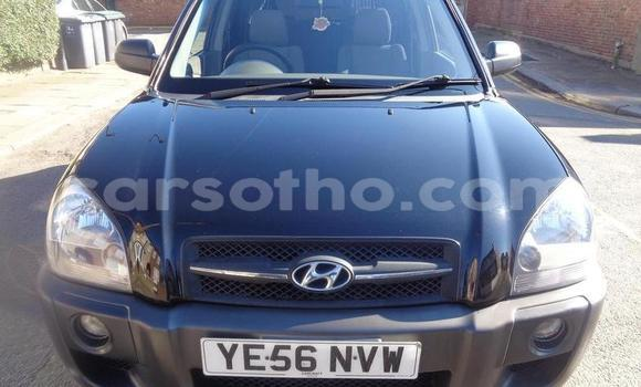 Buy Used Hyundai Tucson Black Car in Thaba–Tseka in Mafeteng