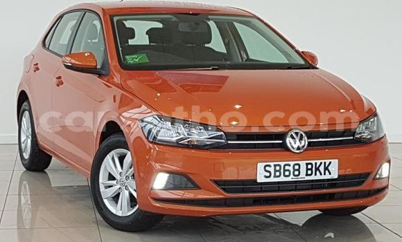 Buy Used Volkswagen Polo Other Car in Butha Buthe in Butha-Buthe