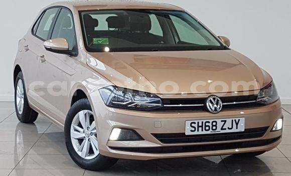 Buy Used Volkswagen Polo Beige Car in Qacha's Nek in Quthing