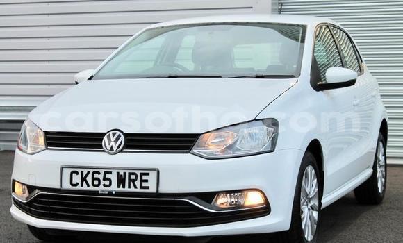 Buy Used Volkswagen Polo White Car in Peka in Leribe