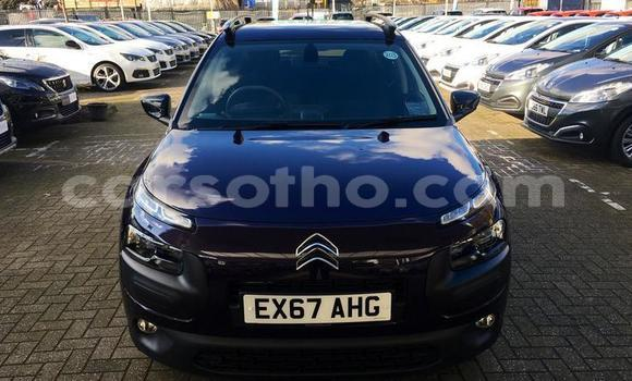 Buy Used Citroen C4 Cactus Other Car in Roma in Maseru