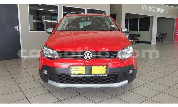 Buy Used Volkswagen Polo Red Car in Mafeteng in Mafeteng
